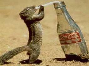 coke-aha